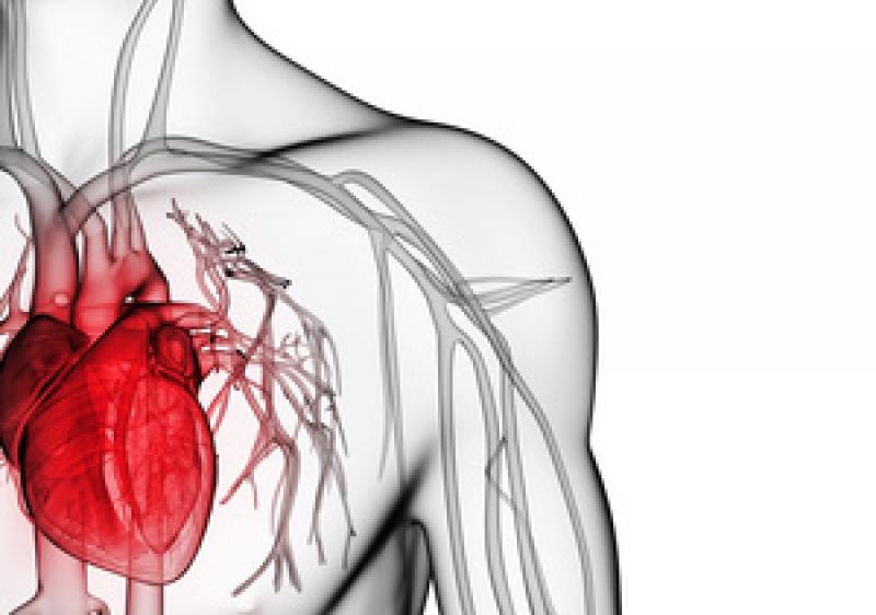 otsloyka-intimi-aorti